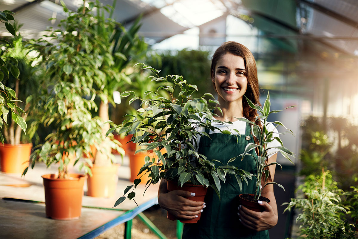 Growing Your Business: Dealing with Seasonality